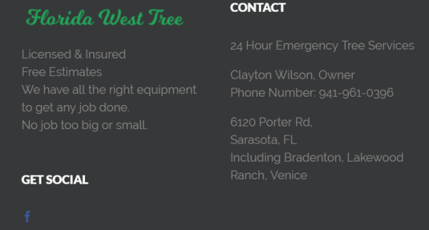 florida tree.PNG